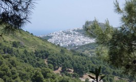 Skyros, A Gift of Nature: Let's Go to Greece This Summer!