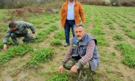 IOCC SUPPORT FOR COOPERATIVES CREATES JOBS FOR FAMILIES IN GREECE
